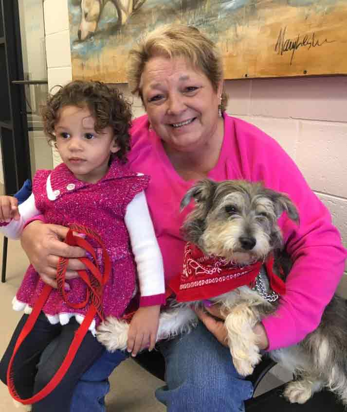 Doyle the Schnauzer adopted