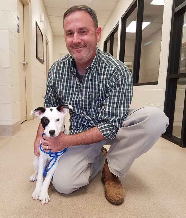 Dublin the Pointer gets adopted