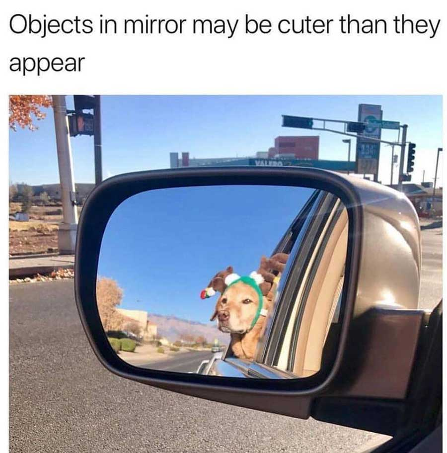 Objects in mirror meme