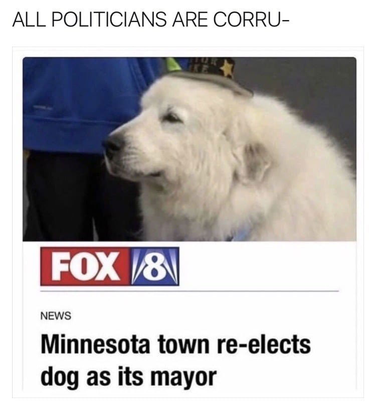 Dog Mayor Meme