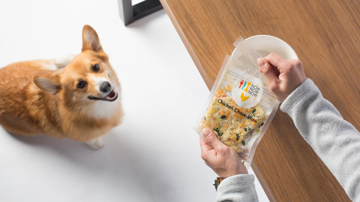 Better Food, Better Health: Responsible Food for Pet Parents by NomNomNow